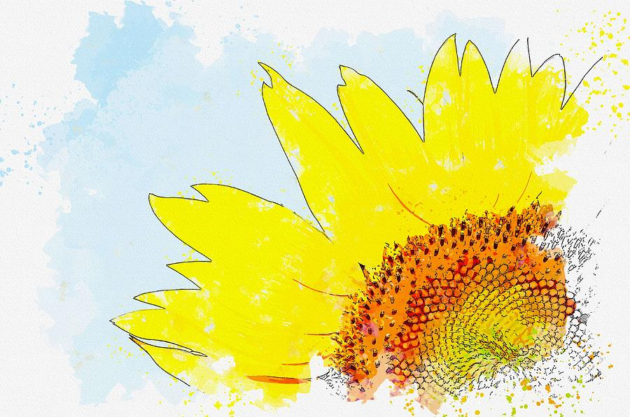Hilarity Life Summer Sunshine Sunflower -  watercolor by Ahmet Asar by Ahmet Asar