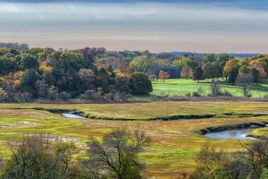 Hill Top View, Estuary Crane Estate by Michael Hubley