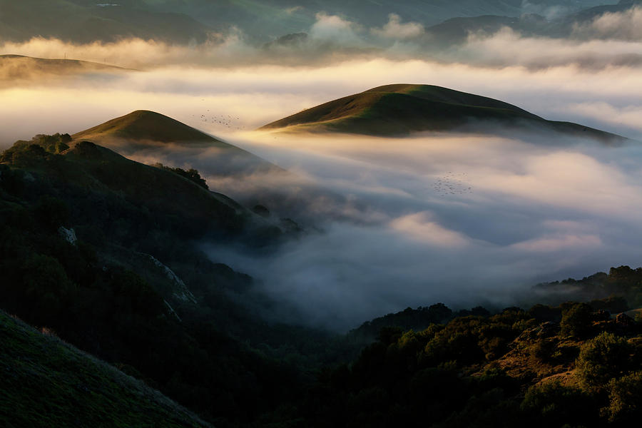 Hills and Fog by Rick Pisio