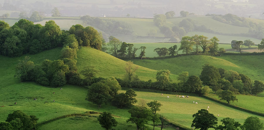 Hills Photograph by Lewis Gillingham