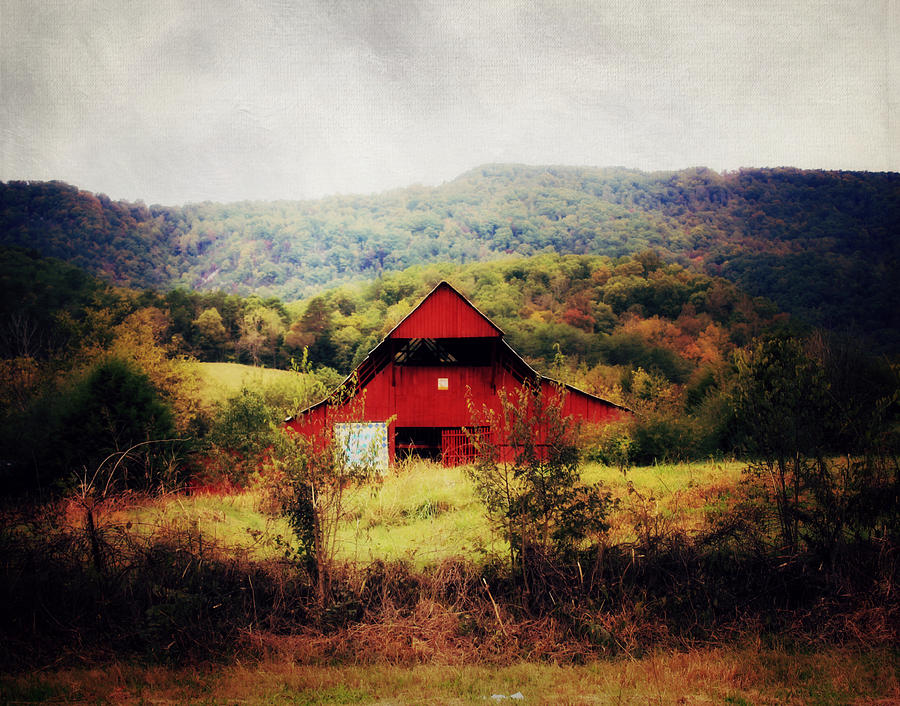 HIlls of Tennessee by Julie Hamilton