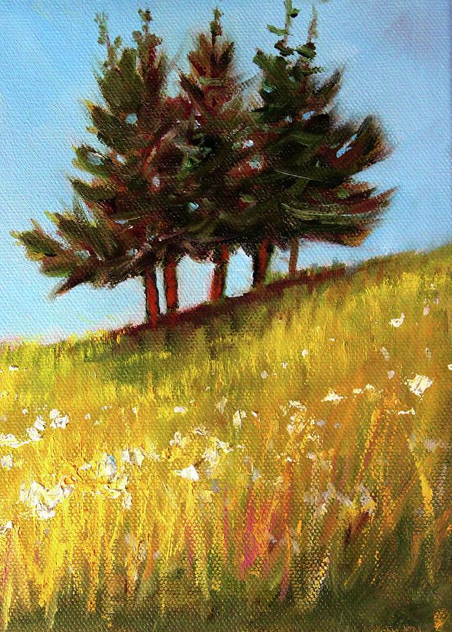 Hillside Evergreens by Nancy Merkle