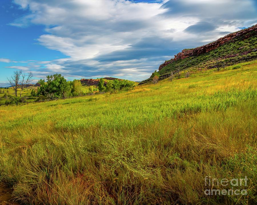 Hillside by Jon Burch Photography