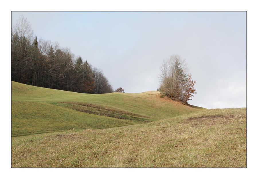 Rural Landscape Photograph - Hilltop Hayfield by David Wilde