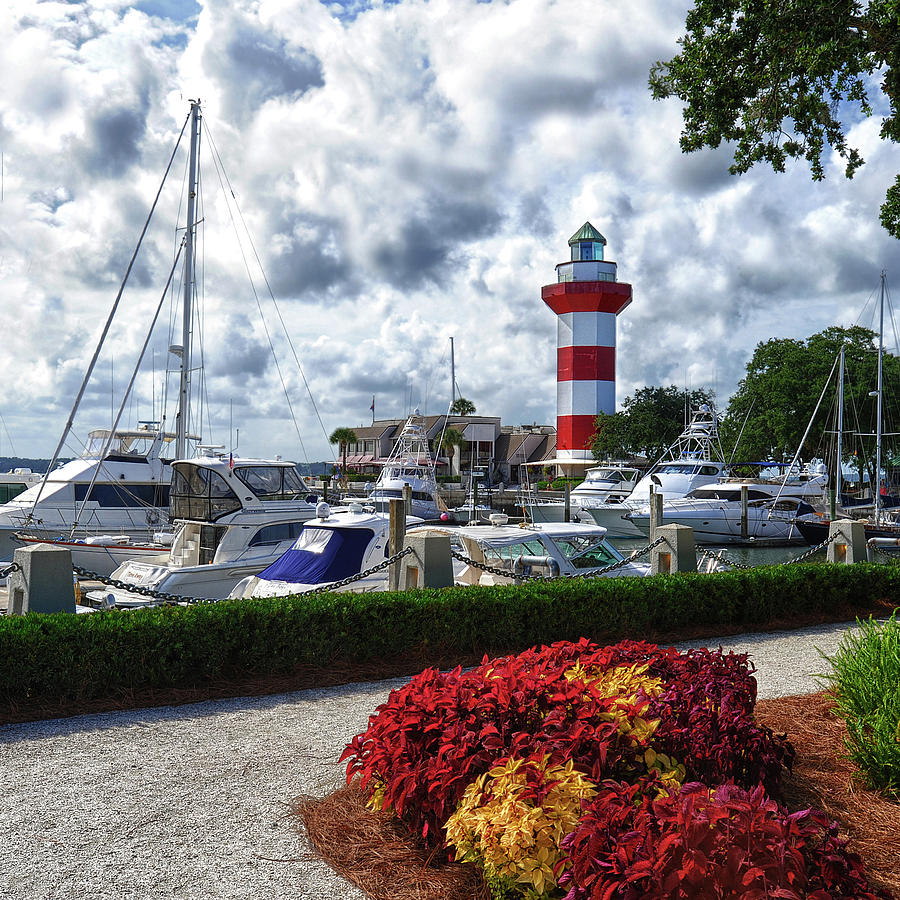 Hilton Head Island - square by Renee Sullivan