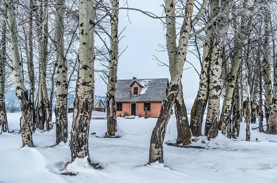Winter Photograph - Historic Mormons Row in Teton National Park by Jason Sponseller