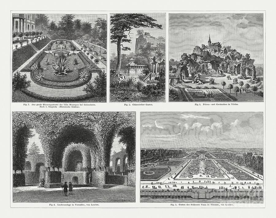 Historical Evidence Of Gardening, Wood Digital Art by Zu 09