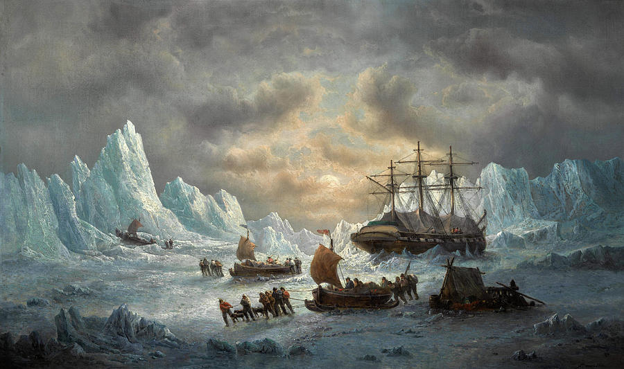 Hms Resolute Painting - Hms Resolute In Search Of Sir John Franklin by Francois Musin