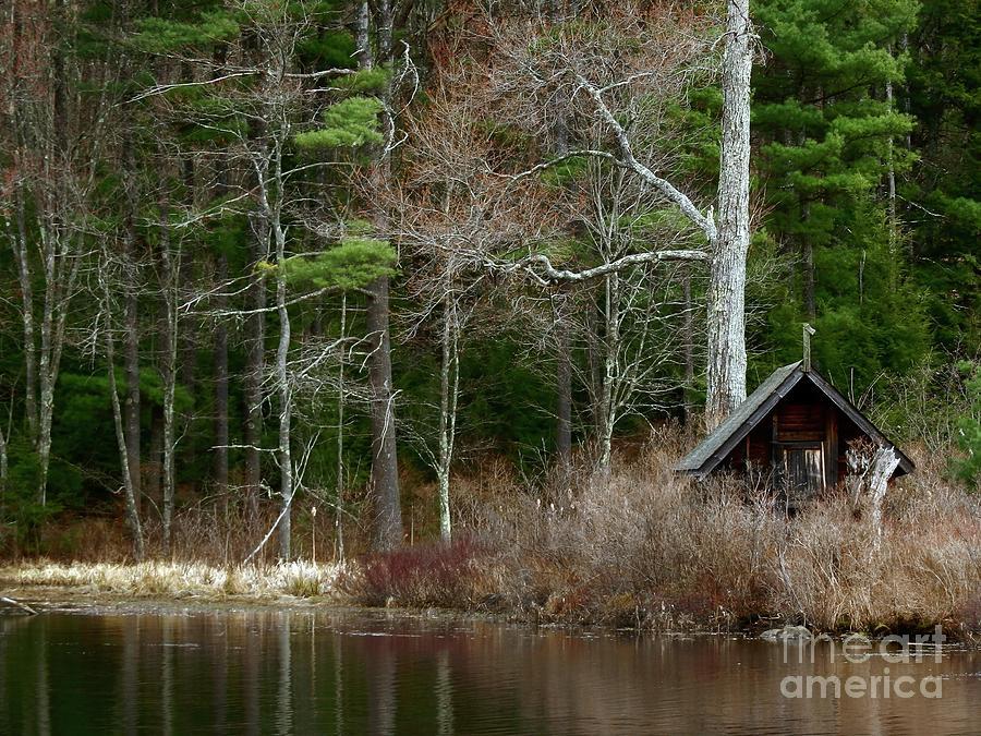 Hobbits House #3 by Marcia Lee Jones