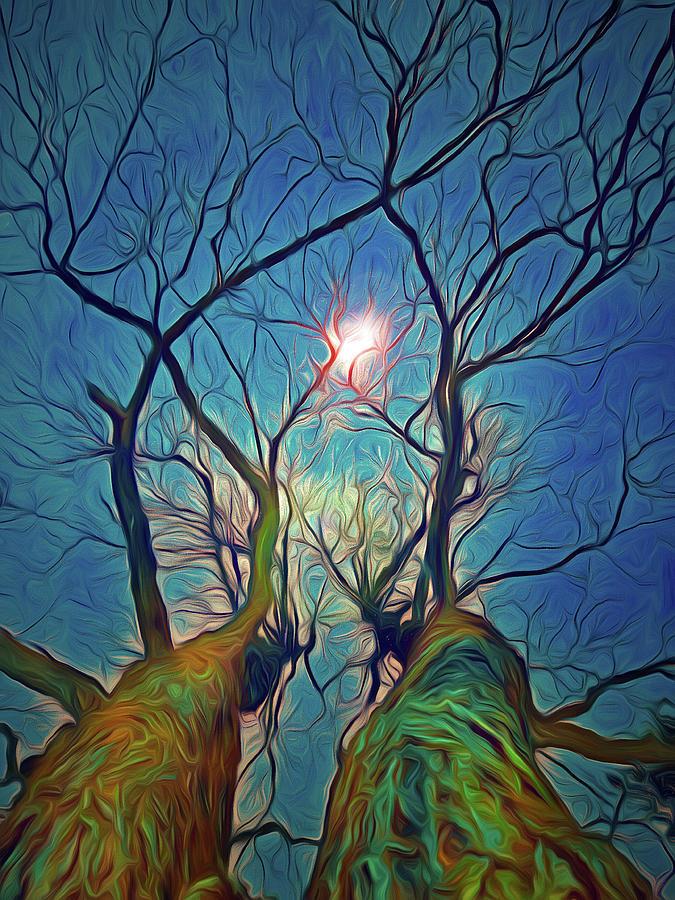 Holding Up the Light by Tara Turner