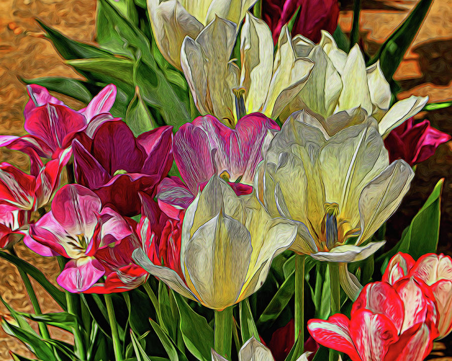 Holland Ridge Tulip Farm # 27 by Allen Beatty