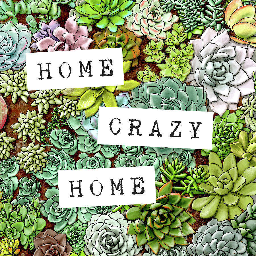 Home Crazy Home Succulent Art by Jen Montgomery by Jen Montgomery