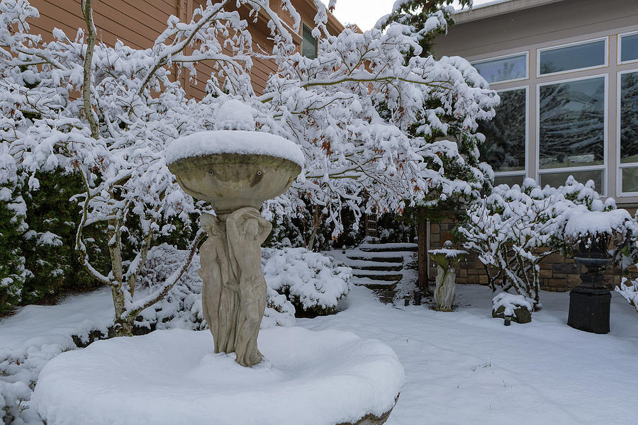 Home Garden Front Yard Covered in Snow by David Gn