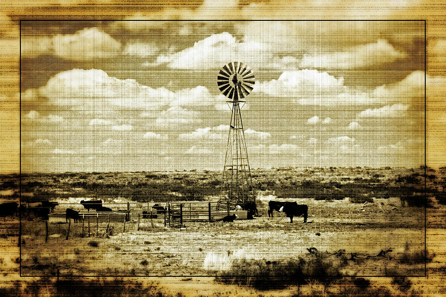 Home, Home on the Range by Tikvah's Hope
