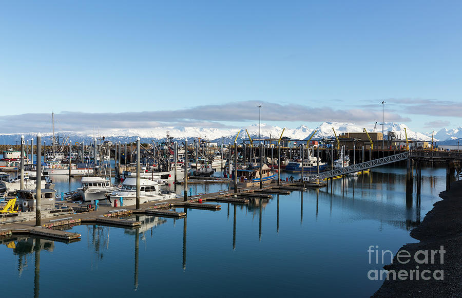 Homer Photograph - Homer Alaska Fishing Port by Louise Heusinkveld