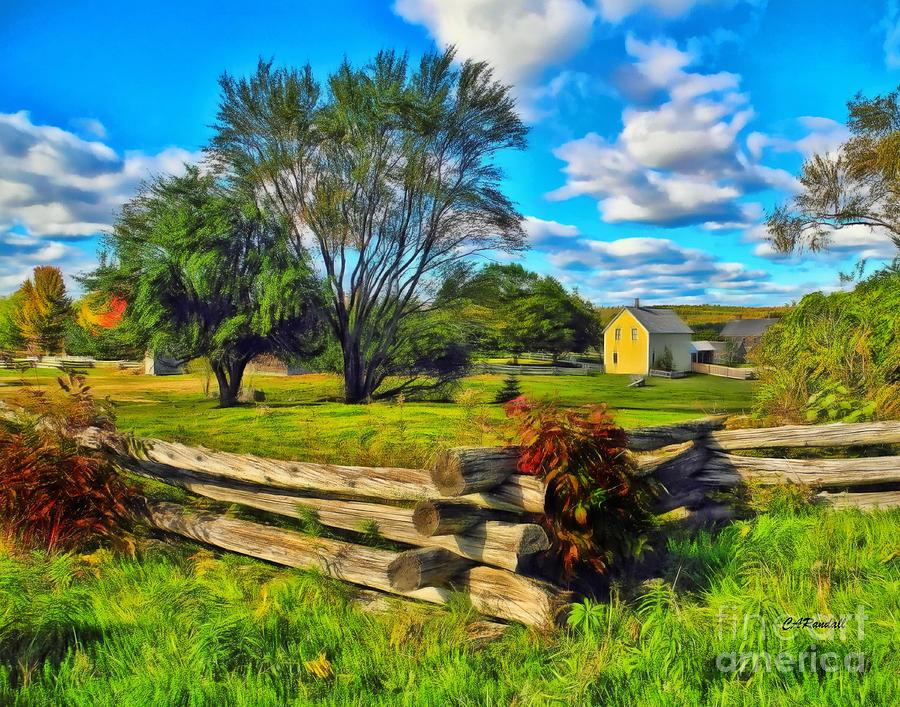 Homestead Fences by Carol Randall