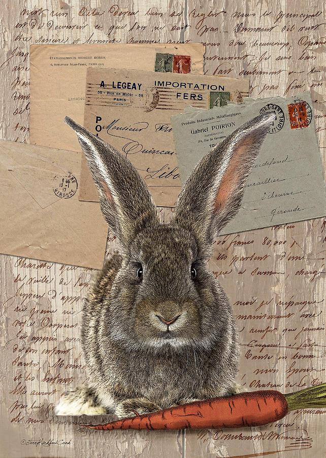 Honey Bunny by Terry Kirkland Cook