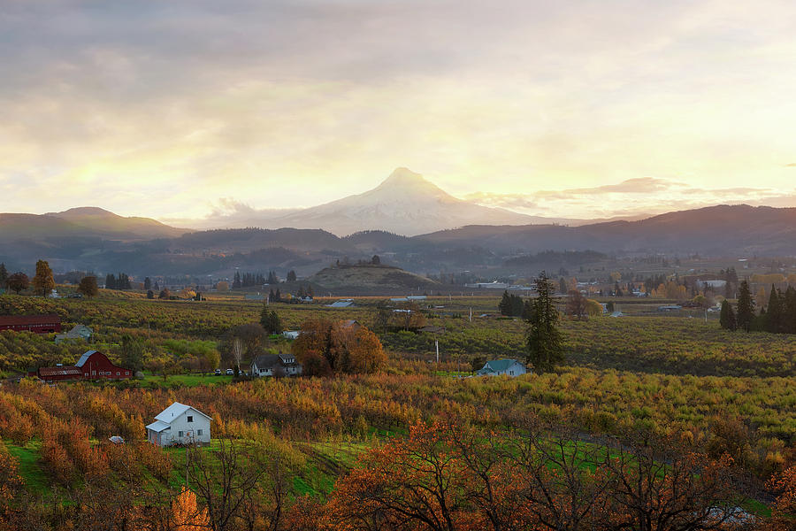 Hood River Oregon at Sunset in Fall by David Gn