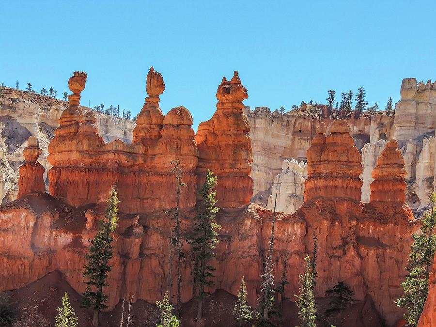 Hoodoos Along the Peek-a-Boo Loop by NaturesPix