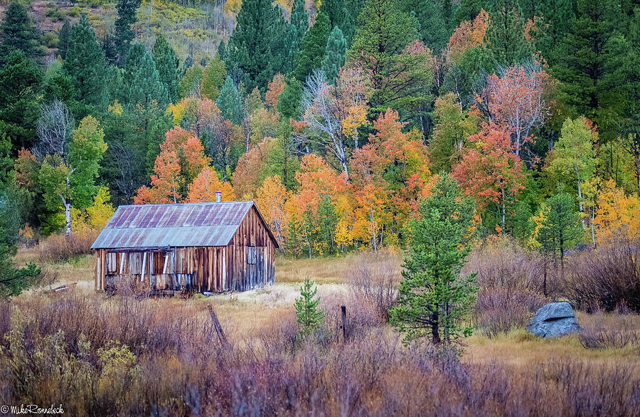 Hope Valley Cabin by Mike Ronnebeck