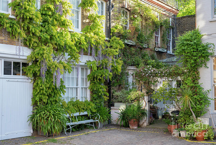 Horbury Mews Notting Hill by Tim Gainey
