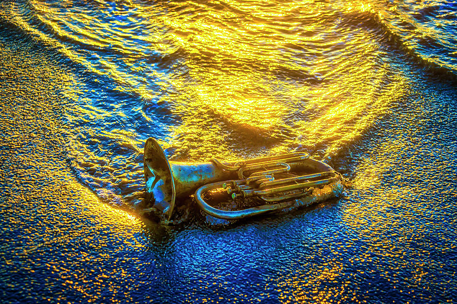 Wave Photograph - Horn In The Surf by Garry Gay