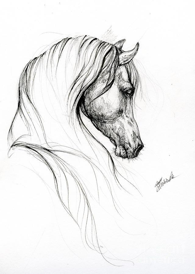 Horse art 2019 09 02 by Angel Ciesniarska