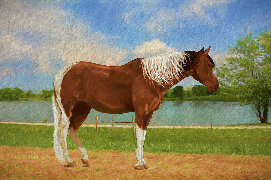 Horse at the Pond - Painting by Ericamaxine Price