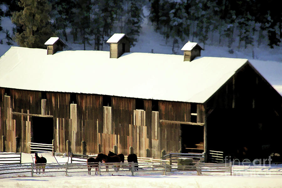 Horse Barn 2 by Roland Stanke