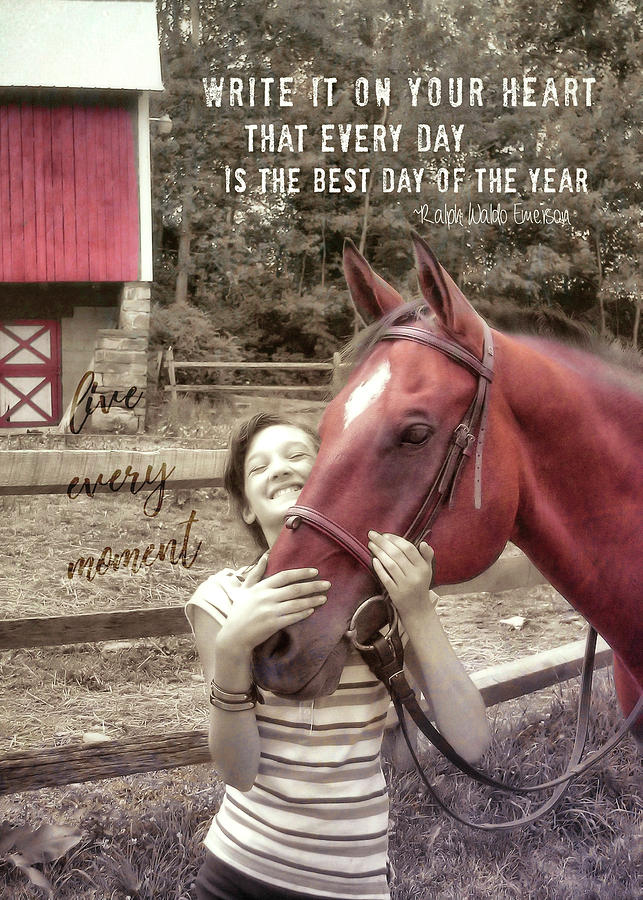 Horse Photograph - Horse Crazy Quote by JAMART Photography