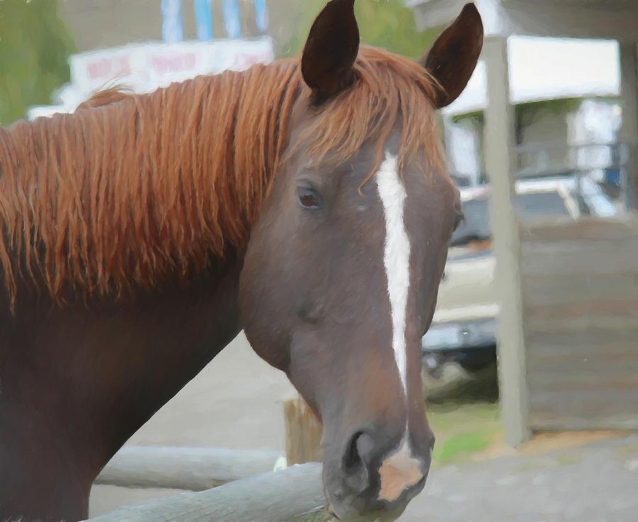 Horse Dude by Kathy Bassett