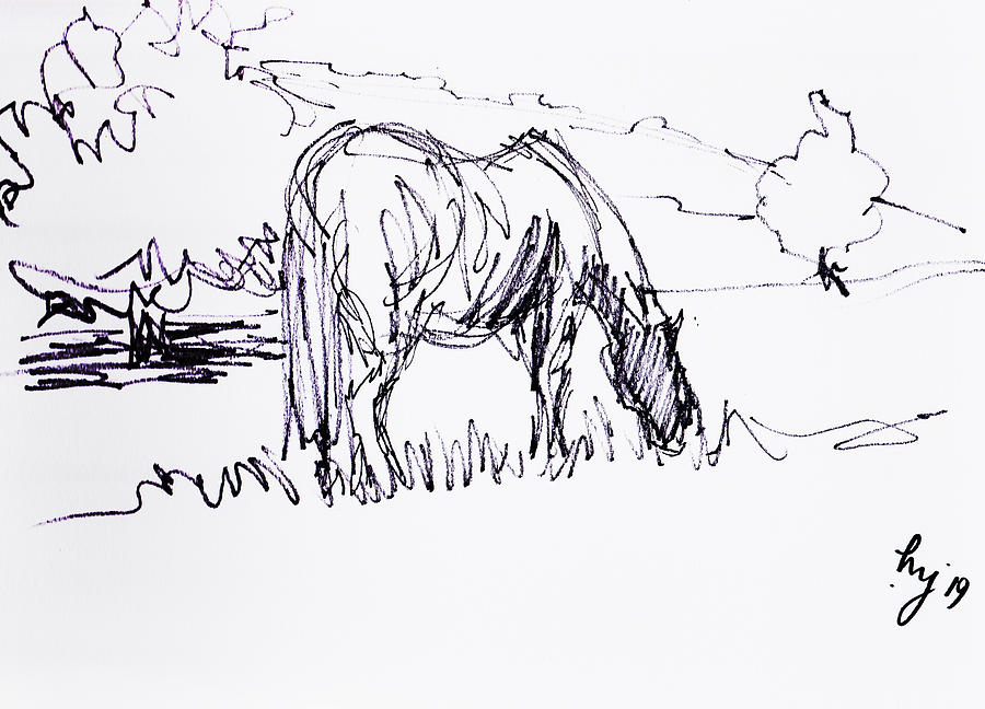 Horse grazing drawing by Mike Jory