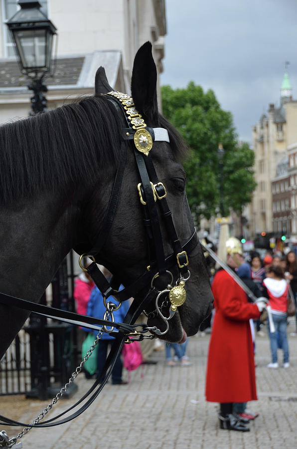 Horse Guard Parade, Whitehall, London by RicardMN Photography