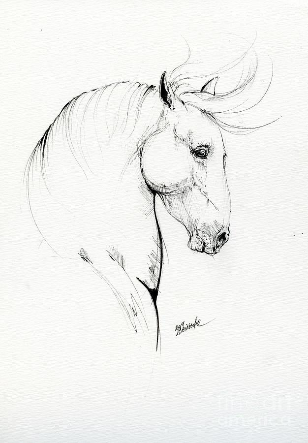 Horse head 2019 08 14 by Angel Ciesniarska