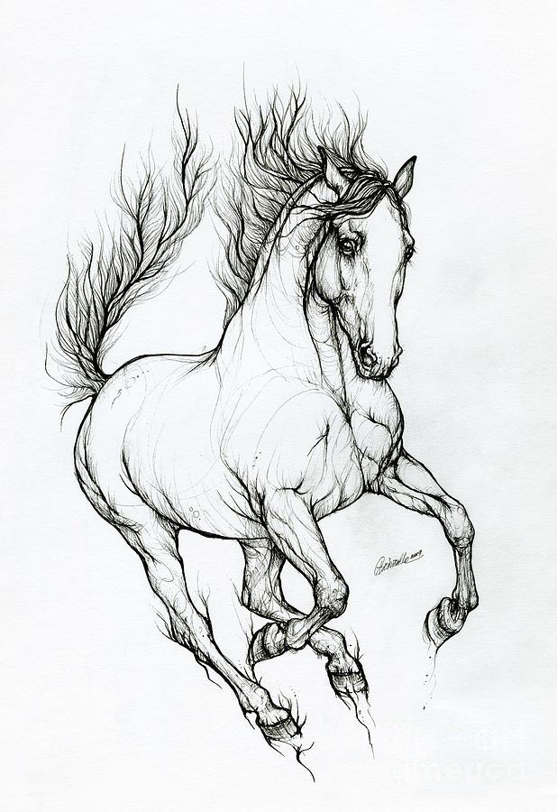 Horse ink art 2019 10 09 by Angel Ciesniarska