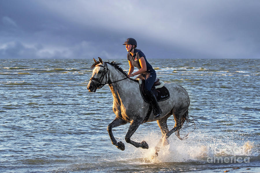 Horse Riding on the Beach by Arterra Picture Library