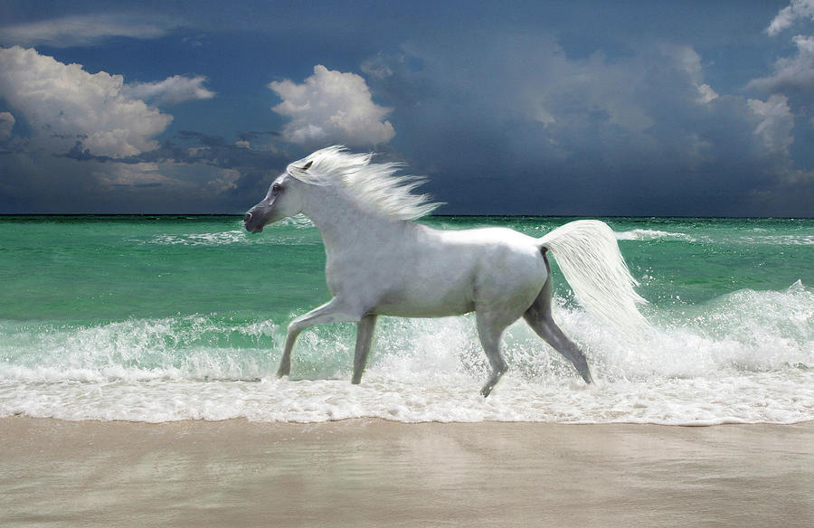 Horse Running Through Surf Digital Art by Gerard Fritz