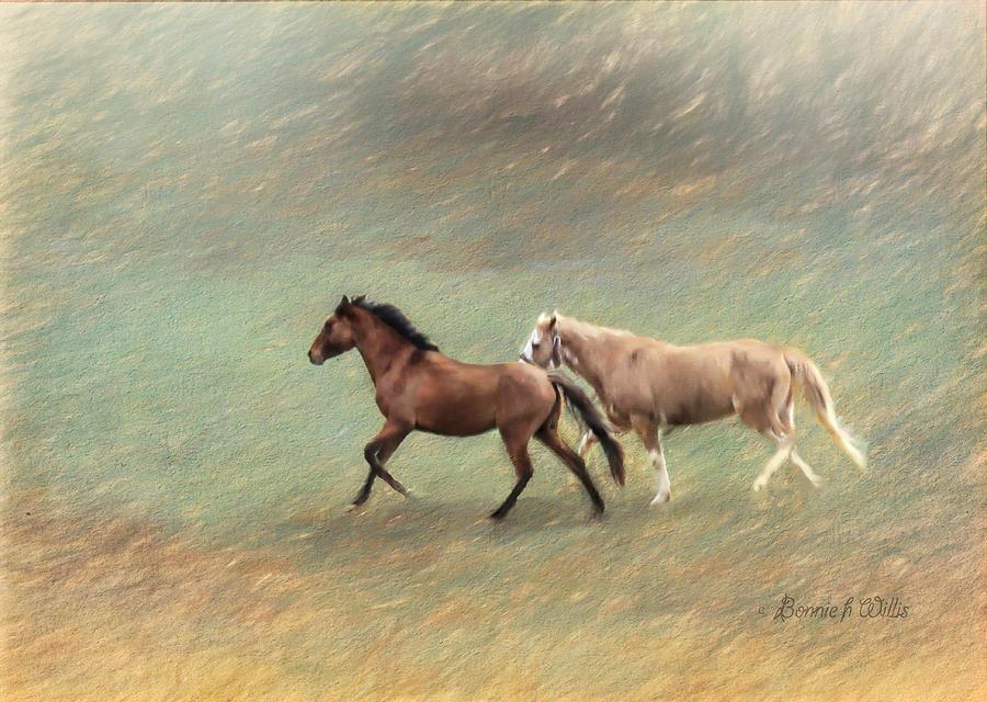 Horse Trail by Bonnie Willis