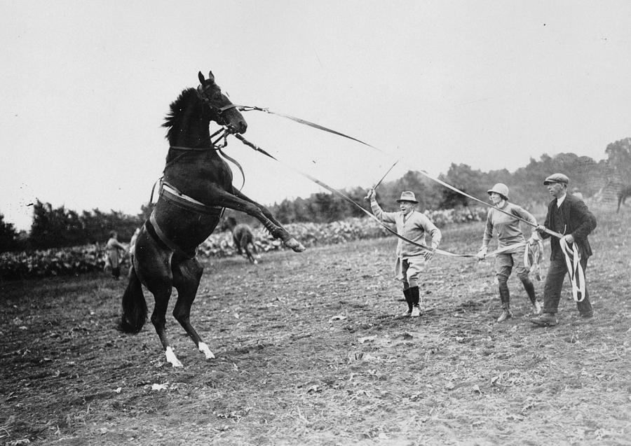 Horse Trainer Photograph by E. F. Corcoran
