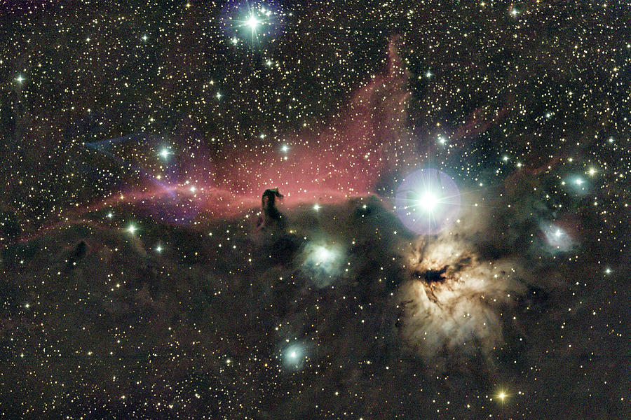 Astro Photograph - Horsehead And Flame Nebulae by Nunzio Mannino