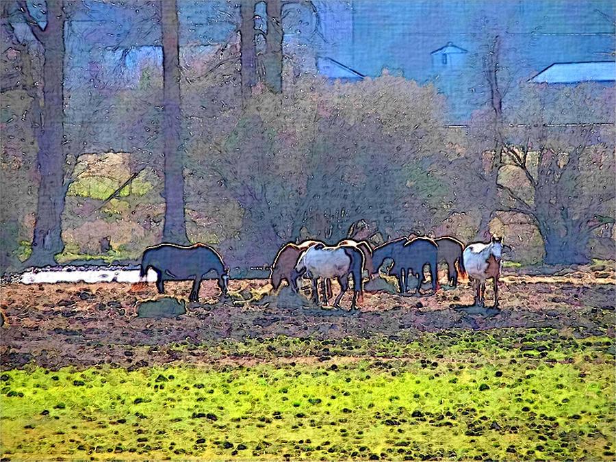 Horses Eating Hay by Robert Bissett