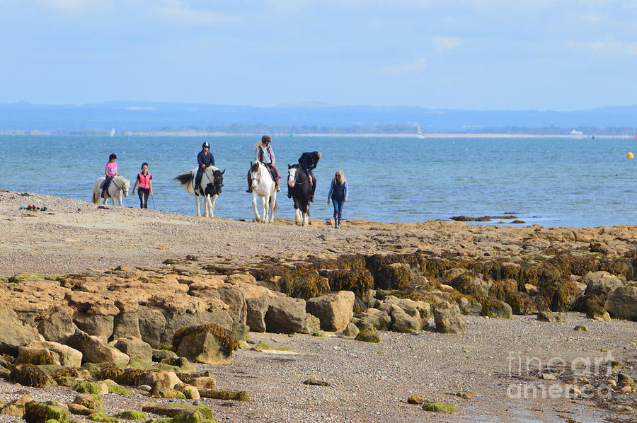 Horses on the Beach by Andy Thompson
