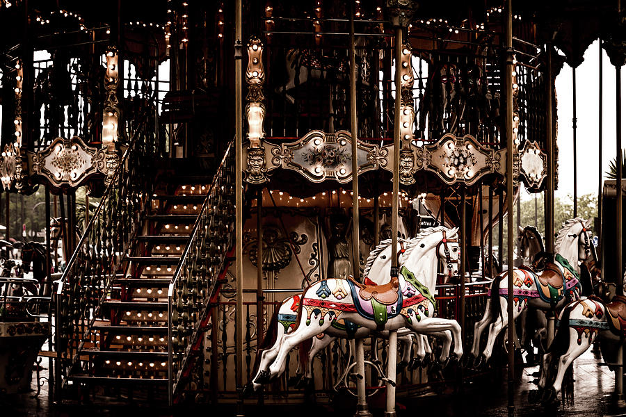 Horses on the Merry Go Round Carousel by Georgia Fowler