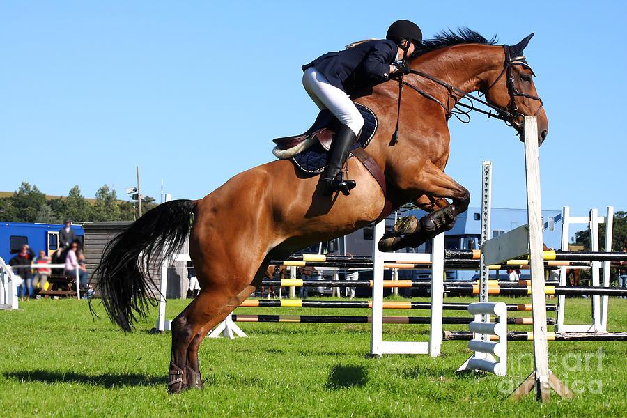 Beauty Photograph - Horses Races by Samot