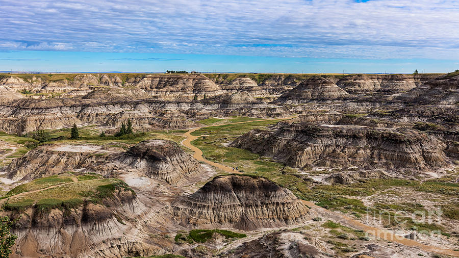 Horseshoe Canyon by Alma Danison