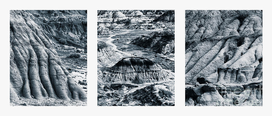 Horseshoe Canyon Triptych by Alma Danison