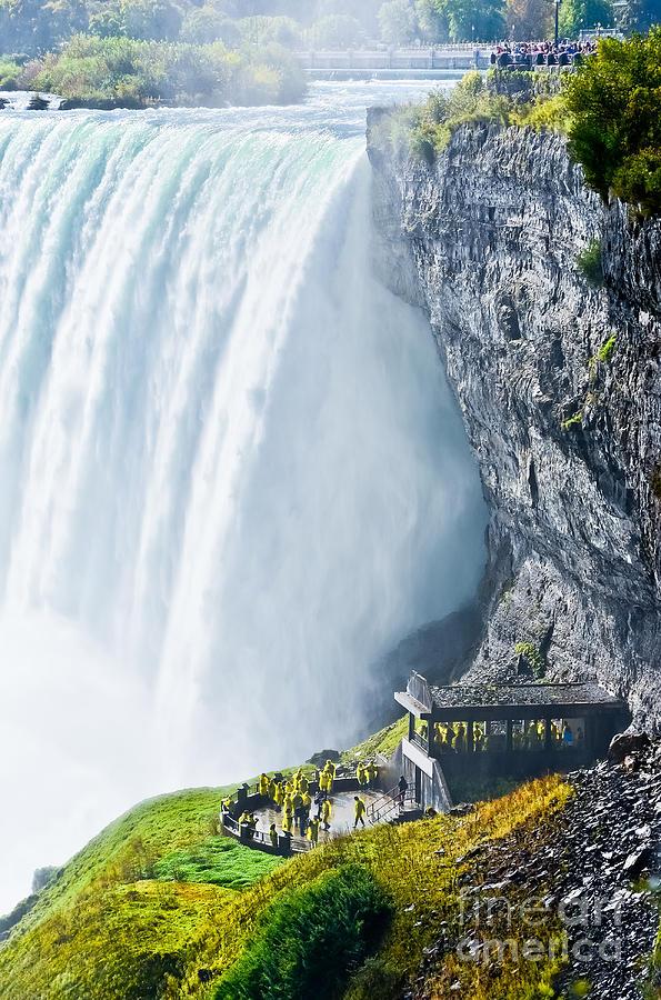 Forest Photograph - Horseshoe Fall, Niagara Falls, Ontario by Javen