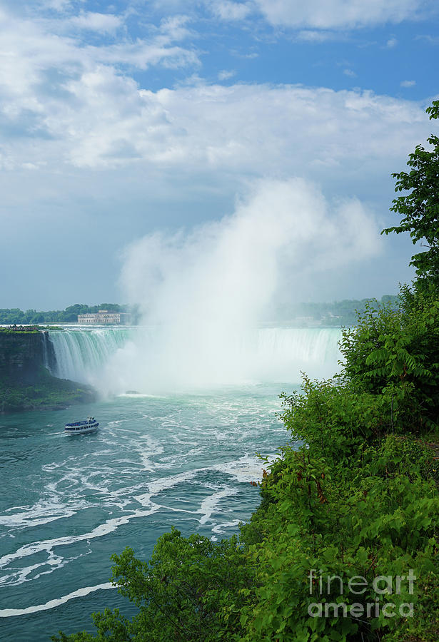 Horseshoe Falls Summer by Rachel Cohen