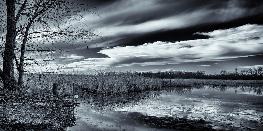 Horseshoe Lake IL BnW 1x2 GRK2083_01042019 by Greg Kluempers