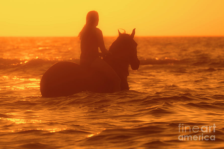 Horsewoman at Sunset by Arterra Picture Library